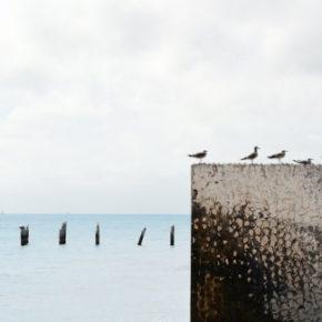 Perché la cementificazione del lungomare di San Lorenzo, in Calabria, sarebbe una sconfitta per tutti
