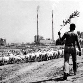 Ottana: dal miracolo economico all'incubo dell'amianto Killer