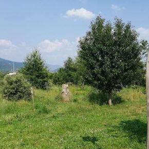 Salviamo l'Ortoparco di Rodengo Saiano (Brescia)