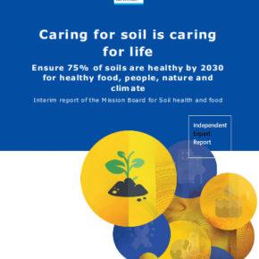 Prendersi cura del suolo è prendersi cura della vita