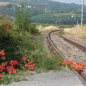 """Piemonte: riparte l' """"accanimento terapeutico"""" contro i treni locali"""