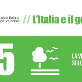 ASviS: L'Italia e il Goal 15, serve un Piano nazionale di ripristino dei sistemi naturali