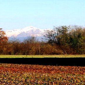 Parco Agricolo e riduzione complessiva del consumo di suolo: una proposta ecologista per la Provincia di Varese