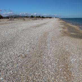 Attacco alla costa: in arrivo cemento vista mare a Pineto (Teramo) su 40 ettari di una delle ultime aree vergini del litorale medio adriatico