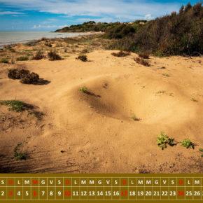 """""""Le Dune Costiere in Sicilia"""" è il Calendario Ambientale della Associazione per lo Sviluppo SOstenibile e Centro di Educazione Ambientale Messina"""