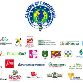 Giornata mondiale delle api: in Italia oltre 30 associazioni e comitati di cittadini in azione