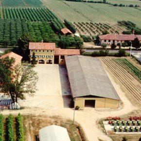 Prosegue il consumo di suolo in Veneto; a Mogliano a rischio anche i Beni Comuni