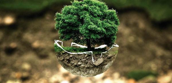 Adottata una Convenzione internazionale per proteggere i difensori dell'ambiente