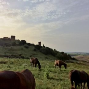 Il T.A.R. Lazio salva la Valle del Mignone